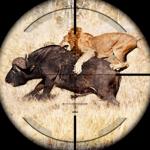Animal Hunting: Safari 4x4 armed action shooter icon