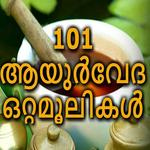 101 Ayurveda Ottamoolikal icon