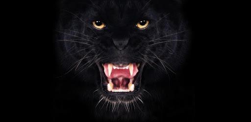 Black panther ferocious pc screenshot
