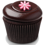 Cupcakes Recipes ! FOR PC