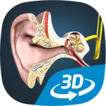 The mechanism of hearing educational VR 3D icon