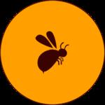 Report Bee Parent icon