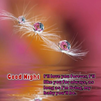 Good Night Love Messages APK Download For Free