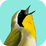 Song Sleuth: Auto Bird Song ID w/ David Sibley icon