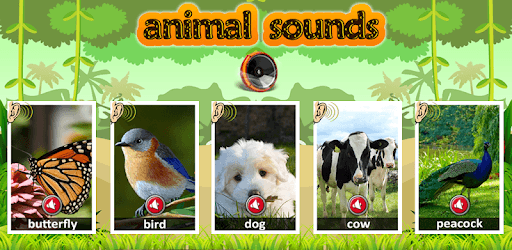 Animal sounds 2019 pc screenshot