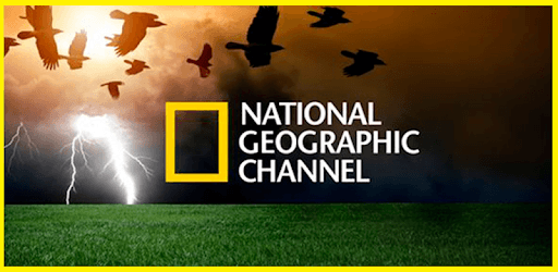 Natural Geographic : Best Documentaries 2019 pc screenshot
