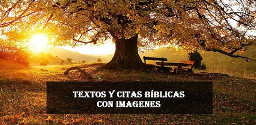 Textos bíblicos con imágenes - Citas bíblicas pc screenshot