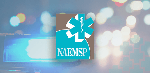NAEMSP pc screenshot
