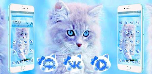 Cute Ice Blue Cat Theme pc screenshot