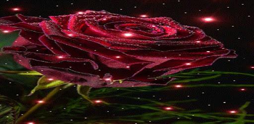 Magical Rose Live Wallpaper pc screenshot