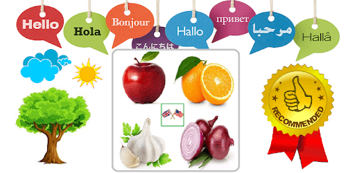 Vegetables and Fruits Vocabulary pc screenshot
