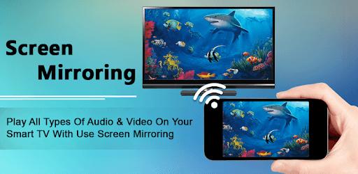 Screen Mirroring with TV : Mobile Screen to TV pc screenshot
