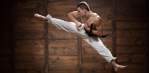 Mastering Taekwondo - Get Black Belt at Home pc screenshot