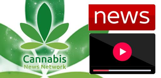 Cannabis News Network pc screenshot
