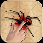 Spider Smasher Game icon