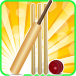 T20 Cricket Blast 2014 FOR PC