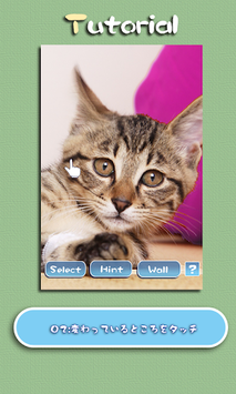 Aha-Experience Scenes of Cats APK screenshot 1