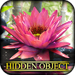 Hidden Object - State of Zen icon