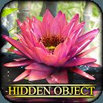 Hidden Object - State of Zen icon