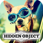 Hidden Object - Travelling Pets icon