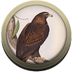 Field Guide Northern Territory icon