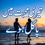 Teri mohabbat mein pagal huy Urdu novel icon