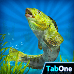 My Fishing HD 2 icon