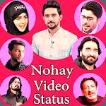 Nohay video status icon