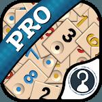 Okey Pro icon