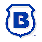 Brinks Home Security icon