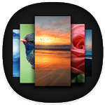 Apex Wallpaper - WhatsApp Wallpapers&Touch Effect icon