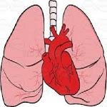 CardioPulmonary Sounds icon