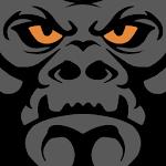 Gorilla Fleet Intelligence icon