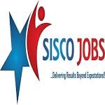 Sisco Jobs icon