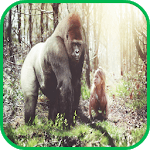 Gorilla Wallpaper icon