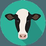 Smart Cow icon