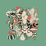 How Often To - Water Succulents icon