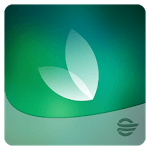 Healthy Path icon