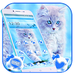 Cute Ice Blue Cat Theme icon