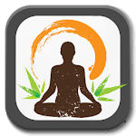 Yoga Lessons - Meditation icon