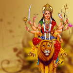 Durga Chalisa, Durga Aarti, Durga Kavach - Skynet icon