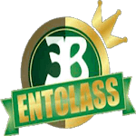Entclass Blog icon