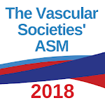 VSASM2018 icon