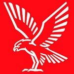 Falck In Safe Hands icon