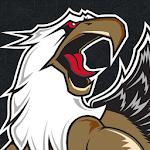 Grand Rapids Griffins Hockey icon