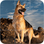 Picture Puzzle: German Shepherd Dogs icon