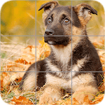 Puppies Puzzle: Shepherd icon