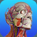Gray's Anatomy – Atlas | Free & Offline icon