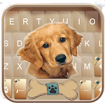 Gold Naive Puppy Keyboard Theme icon