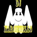 All Songs DJ MARSHMELLO APK icon